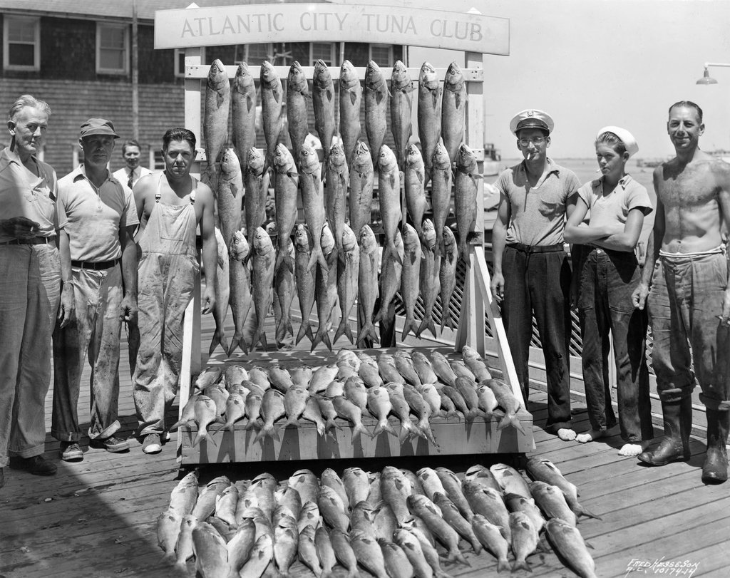 1937_a_haul_of_bluefish_on_proud_display_in_atlantic_city.jpg