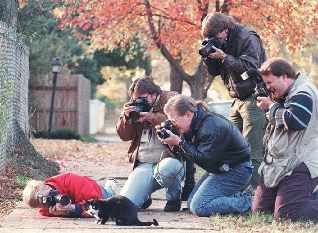 1992_paparazzi_surrounding_socks_bill_clinton_s_cat.jpg