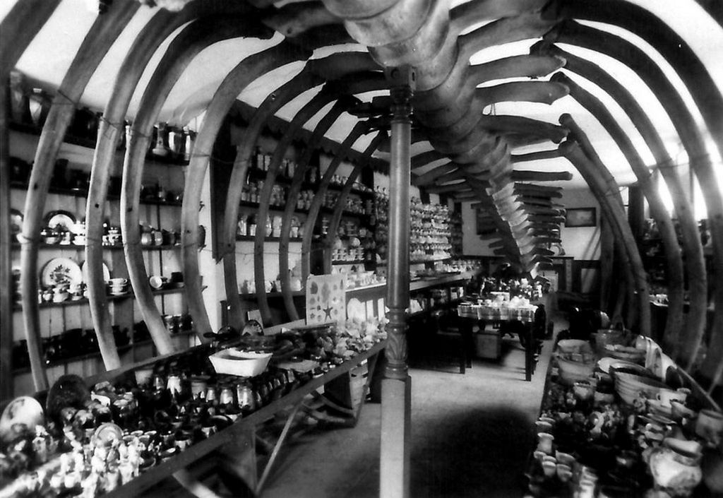 1900_shopping_in_the_belly_of_a_whale_at_the_isle_of_wight_s_blackgang_chine_amusement_park.jpg