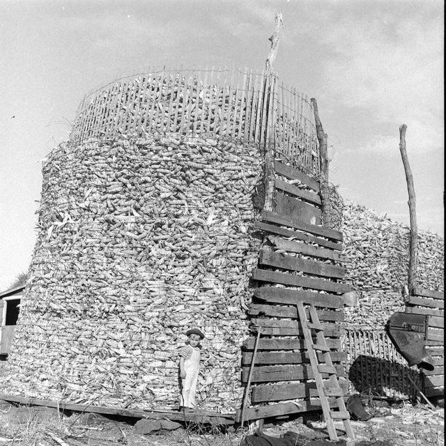 1944_nebraska_corn_harvest.jpg