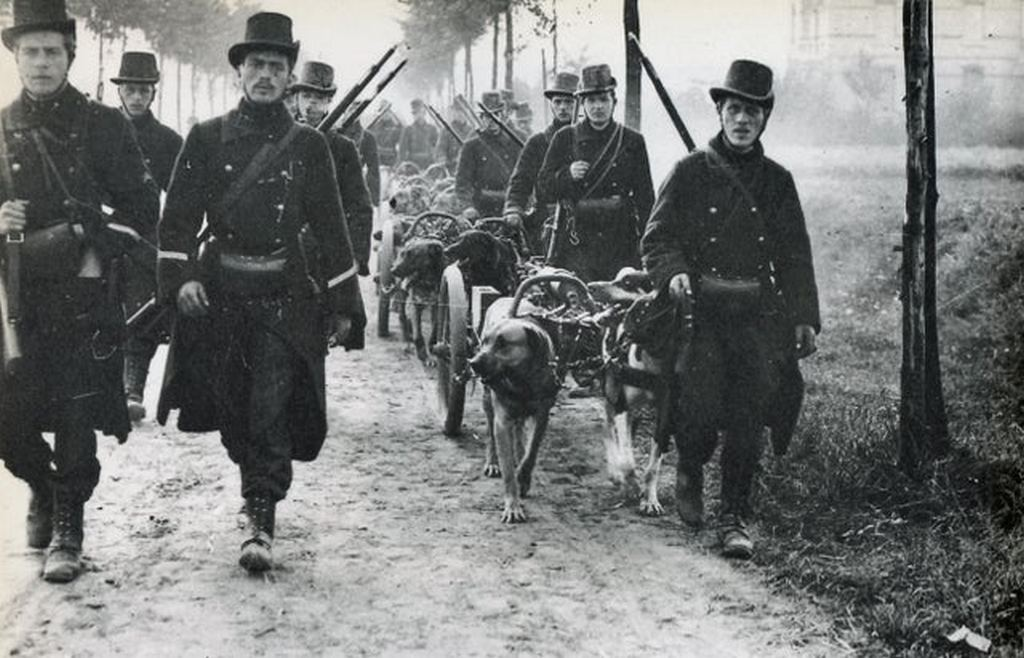 1914_belgian_soldiers_proudly_going_to_ww1.jpg
