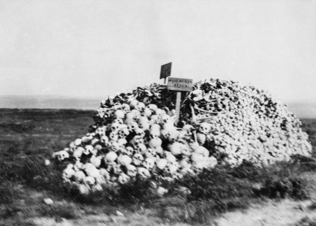 1919_a_heap_of_turkish_soldiers_bones_and_skulls_galipoli_turkey_cr.jpg