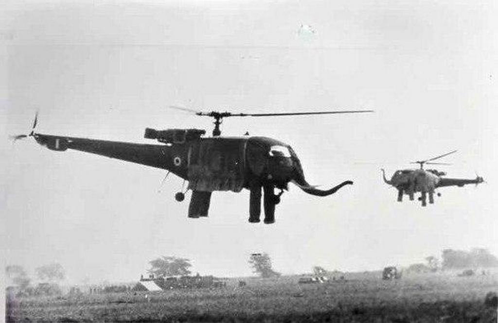 1960-as_evek_sa_316b_alouette_iii_es_hal_chetak_helikopterek_india_valoszinuleg_valamely_vallasi_unnepre_elefantnak_oltoztetve.jpeg