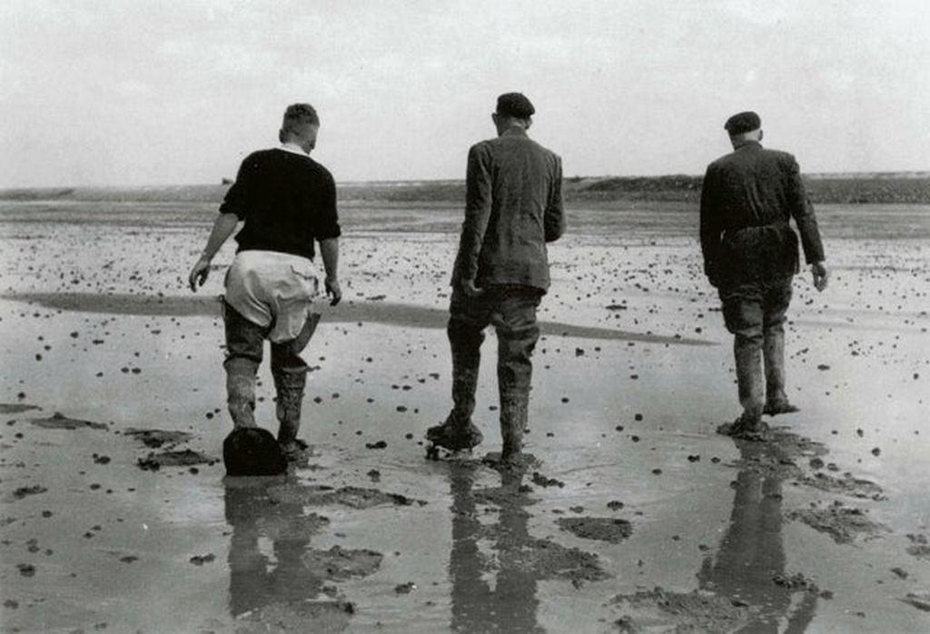1946_three_dutchmen_walking_on_freshly_reclaimed_land_from_the_sea.jpg