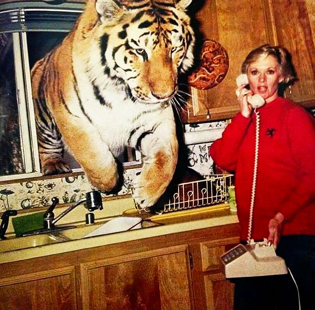 1992_tippi_hedren_in_the_kitchen_of_her_home_in_acton_california_tippi_was_on_the_phone_as_a_tiger_named_zoe_jumped_through_the_kitchen_window.jpg