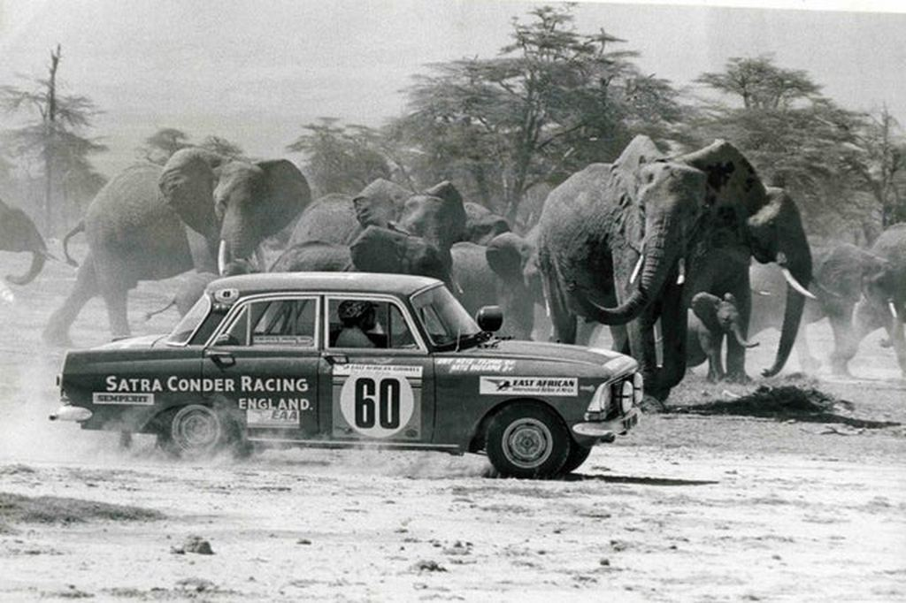 1975_moskvich_1500_wrc_races_past_a_herd_of_elephants_during_the_safari_rally.jpg