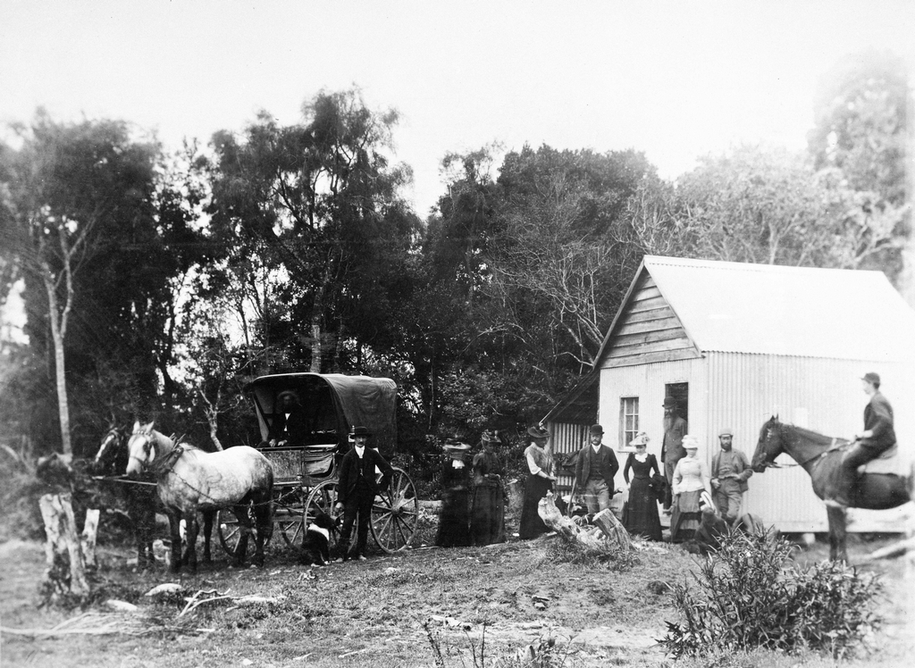1893_l_men_and_women_at_dabinett_and_young_s_store_a_polling_place_in_tahakopa_during_the_nz_general_election_it_was_the_first_election_in_which_new_zealand_women_were_permitted_to_vote.png