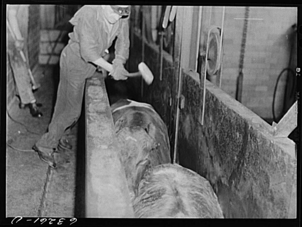1941_a_slaughterhouse_knocker_swings_a_mallet_at_cows_heads_as_they_enter_the_austin_minnesota_meatpacking_plant.jpg