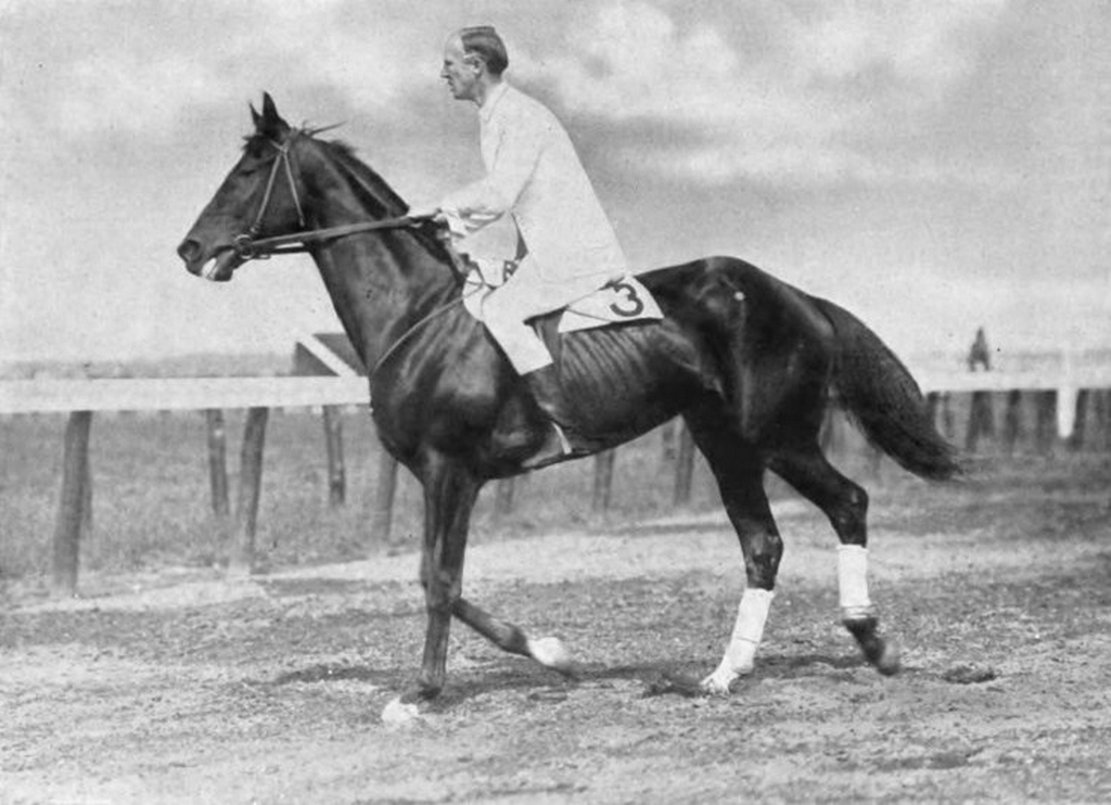 1914_george_patton_riding_his_horse_wooltex_united_states.png