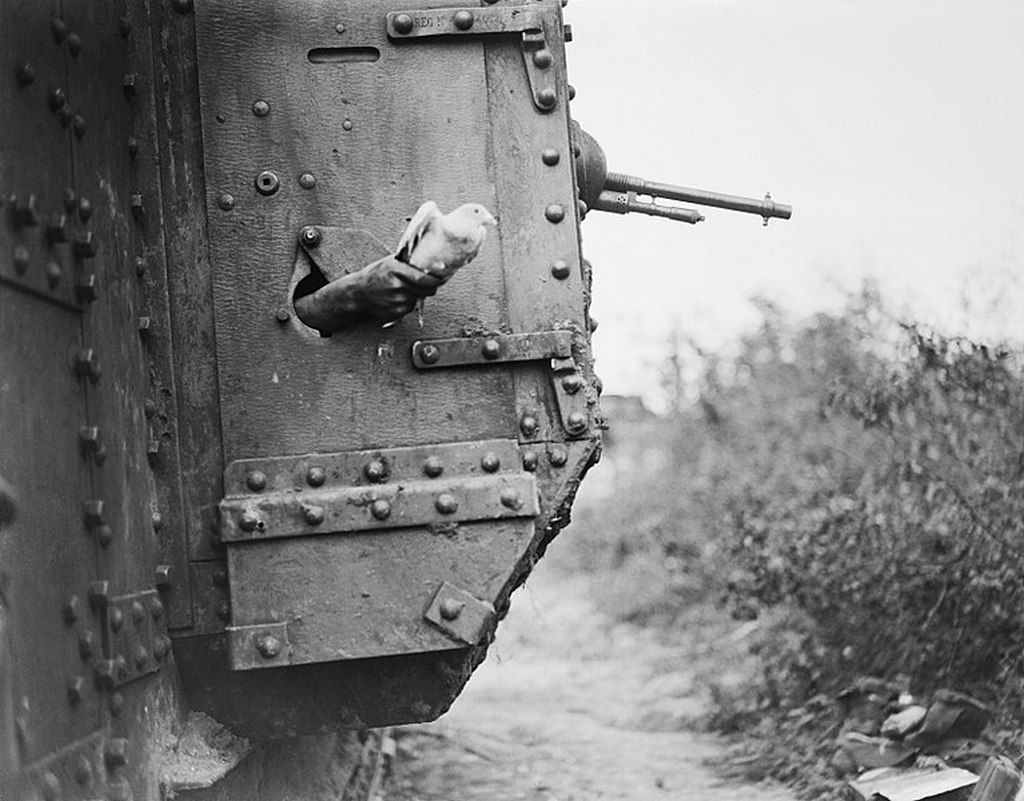 1918_a_carrier_pigeon_is_released_from_a_mark_v_tank_during_the_battle_of_amiens.jpg