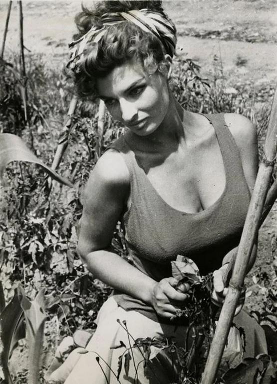 1957_scilla_gabel_italian_actress_and_sophia_loren_s_body_double.jpg