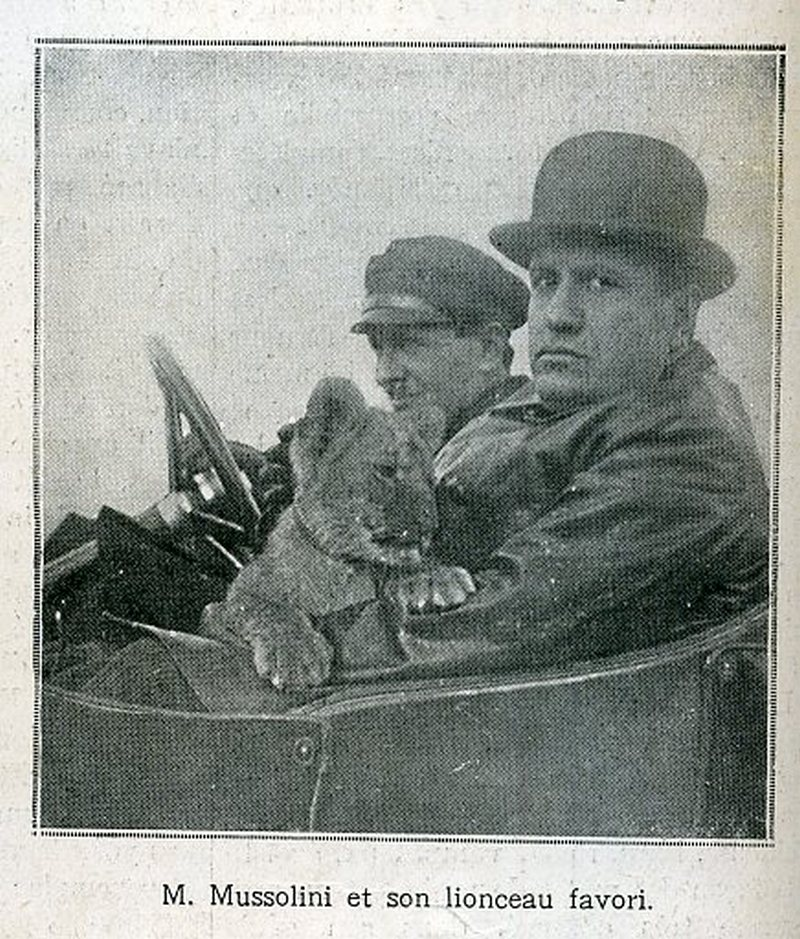 1924. Mussolini kölyökoroszlánjával, Ras-szal..jpg