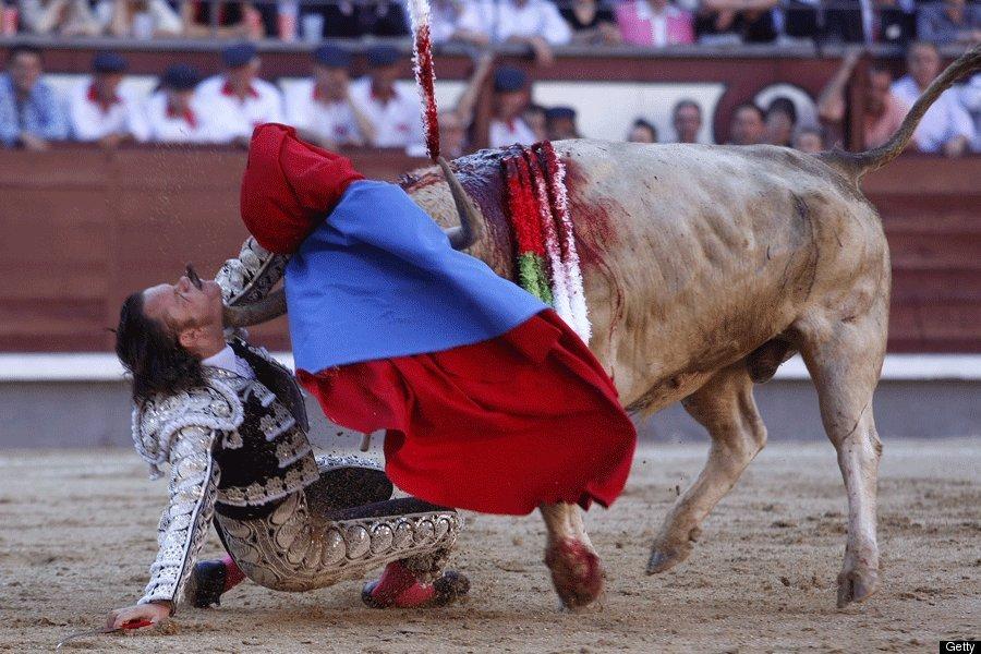 2010_san_isidro_festival_las_ventas_spanyolorszag_julio_aparicio_torreadort_egy_opiparo_nevu_530_kilos_bika_az_arenaban_feloklelte_apericio_tulelte_az_esetet_.jpg