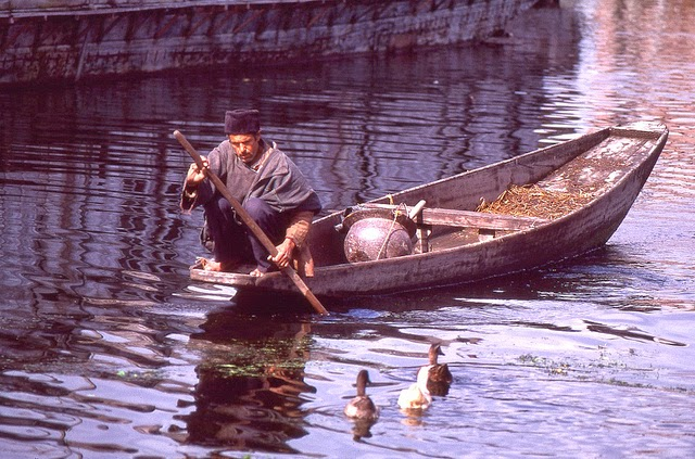 Vale of Kashmir, India, 1982 (17).jpg