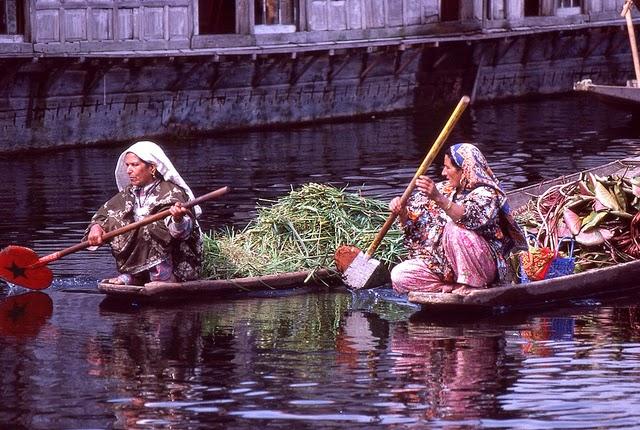 Vale of Kashmir, India, 1982 (18).jpg