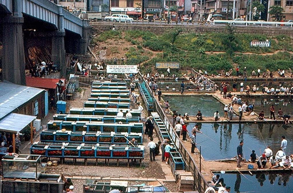 Japan in 1967 (23).jpg