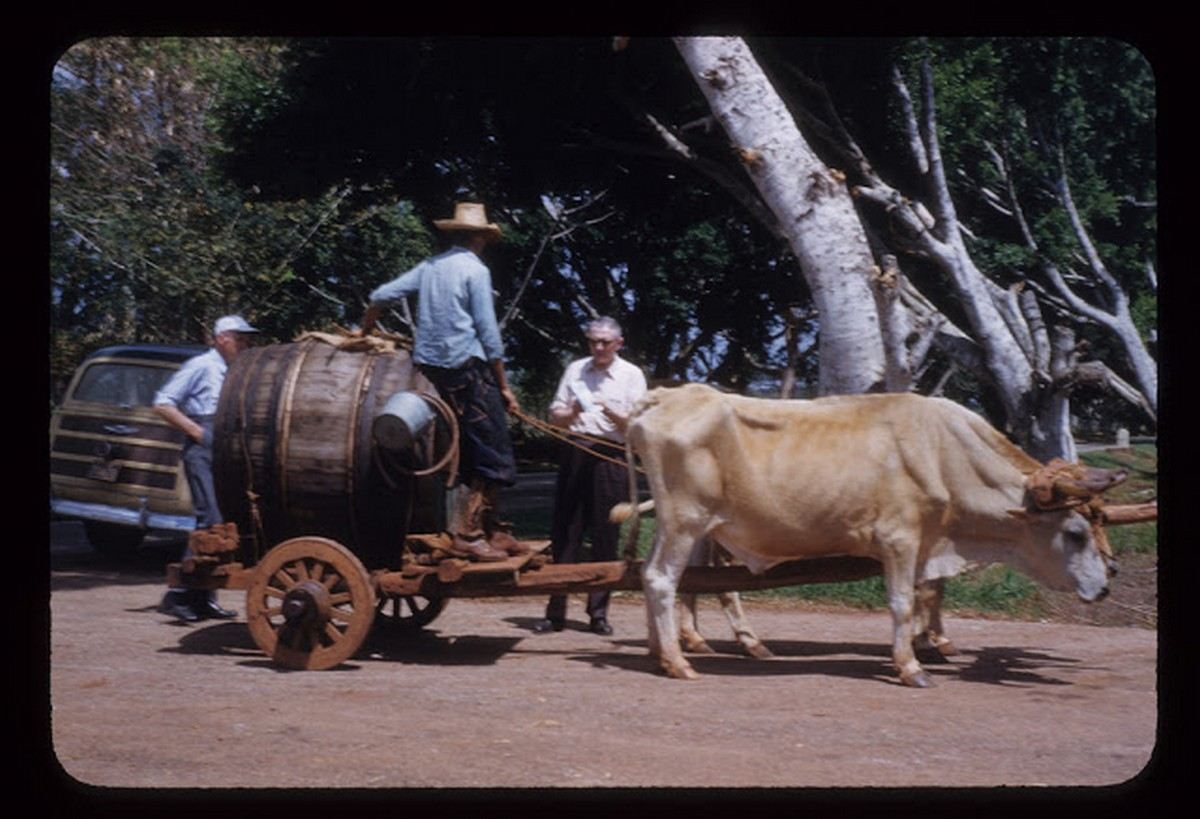 everyday_life_of_cuba_in_the_1950s_2815_29.jpg