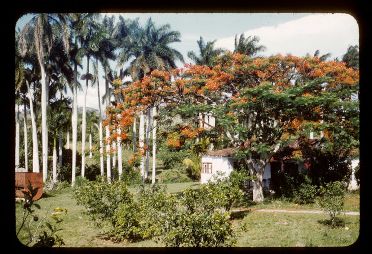 everyday_life_of_cuba_in_the_1950s_2818_29.jpg