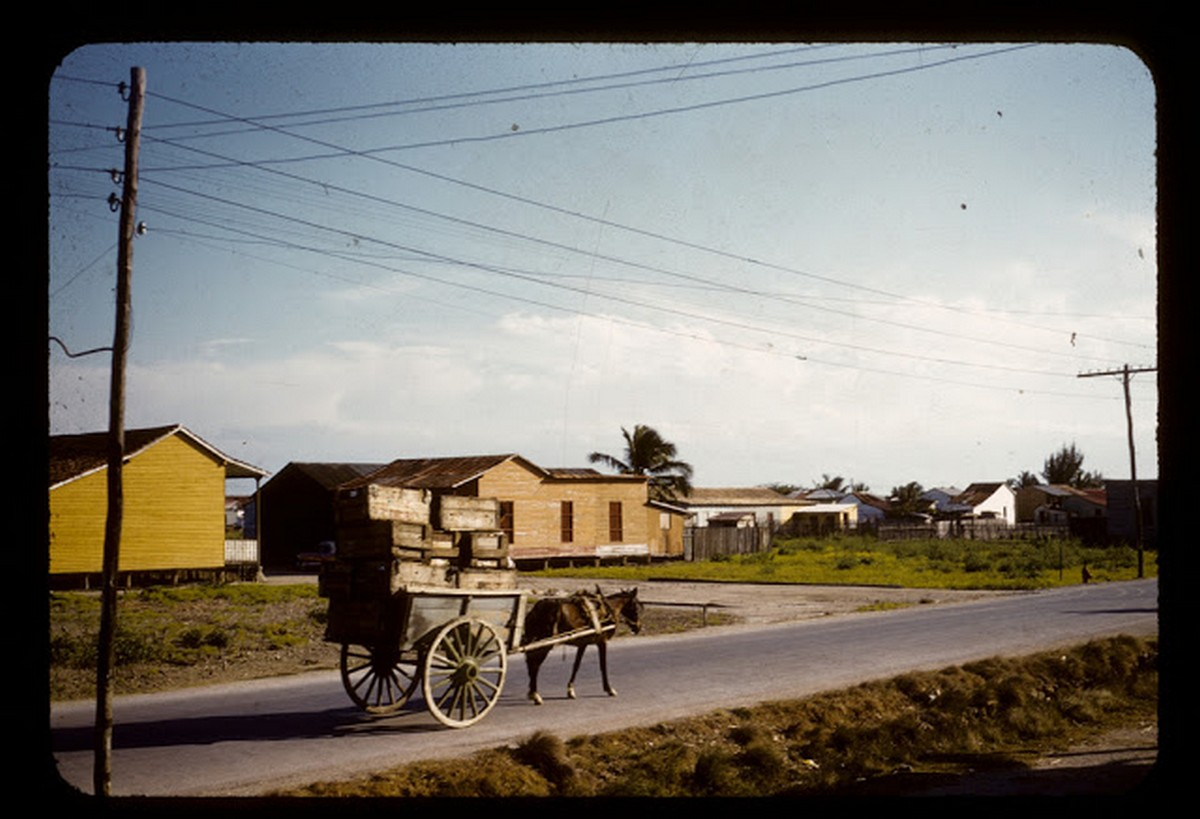 everyday_life_of_cuba_in_the_1950s_286_29.jpg