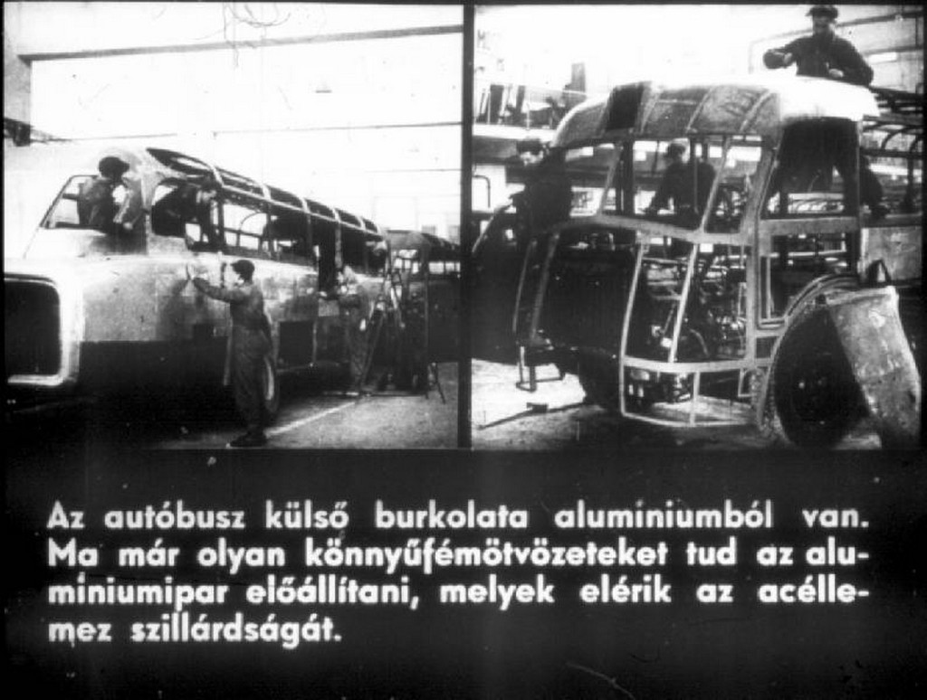 busz51.jpg