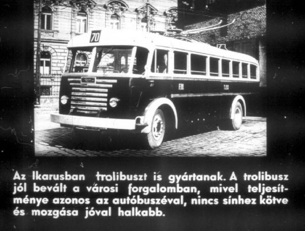 busz63.jpg