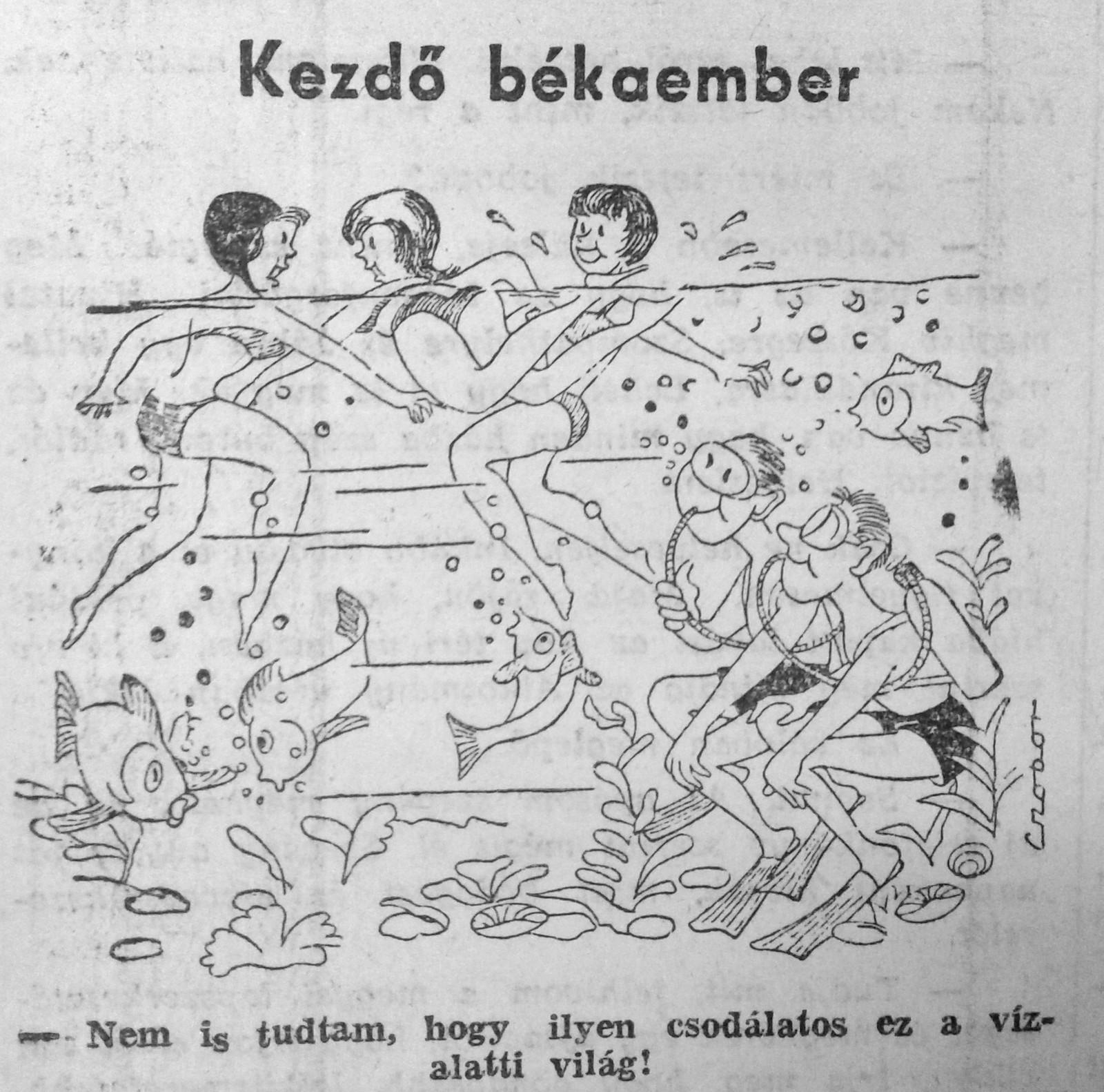 1964_9.jpg