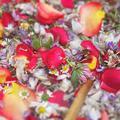 """""""Tavaszi kert"""" virágszörp"""