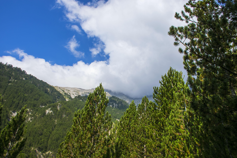 Sandor Adasz Photography<br />Az Olümposz teteje a felhők felett<br />All right reserved