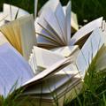 Félbehagyott könyvek éve