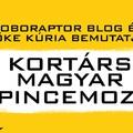 Kortárs Magyar Pincemozi a Művészetek Völgyében