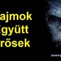 Posztapokaliptikus majomparádé: A majmok bolygója – Forradalom kritika