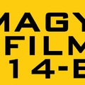 Ilyen volt a magyar film 2014-ben
