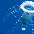 AquaJelly, a medúza