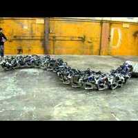 Titanoboa, az óriáskígyó