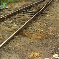 Gyomirtás a vasútnál