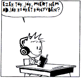 calvin-hobbes-attention 2_1.png