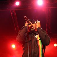 Skindred, Exodus és Everlast a Hegyalja Fesztiválon