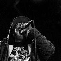 Egy bő hónap és jön a (HED) P.E. új albuma
