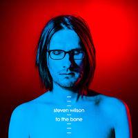 Steven Wilson - To The Bone (Caroline International, 2017)