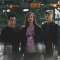 Hallgasd meg a Quicksand új albumát!