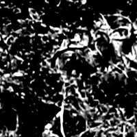 Elkészült a Nagaarum első videklipje