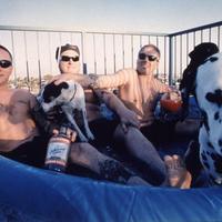 25 éves Sublime évforduló - Kislemez bakeliten, dokumentumfilm meg saját sör