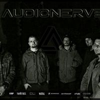 Zenekarként működik tovább az Audionerve