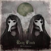 Van új a nap alatt: Rosy Finch - Witchboro (2015)
