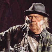 Leégett Neil Young háza, Trumpot okolja érte