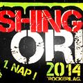 Moshing on Orfű 2014 - 1. nap - Megcsúszás folyamatban