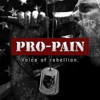 Fej vagy gyomor?: Pro - Pain - Voice Of Rebellion (2015)
