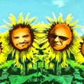 Virágszálak muzsikája - Két hónap és jön a Tomahawk lemeze!