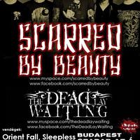 Scarred By Beauty a Szabad az Á-ban!