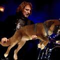 De kutyául szól az a basszus! Az a szóló meg olyan nyúlós, mint a csiganyál!